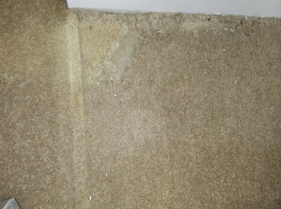carpet cleaning Portsmouth Hampshire